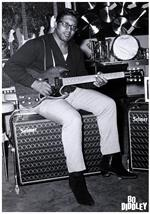 Bo Diddley Poster Image